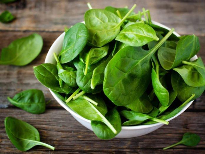 Rau chân vịt là một loại rau có hàm lượng carotene cao giúp đôi mắt luôn sáng khỏe